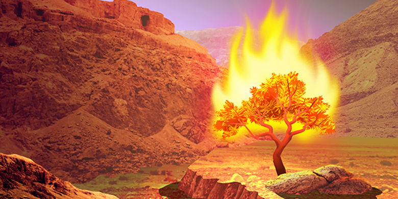Moses tried to decline his mission when God appeared to him at the burning bush